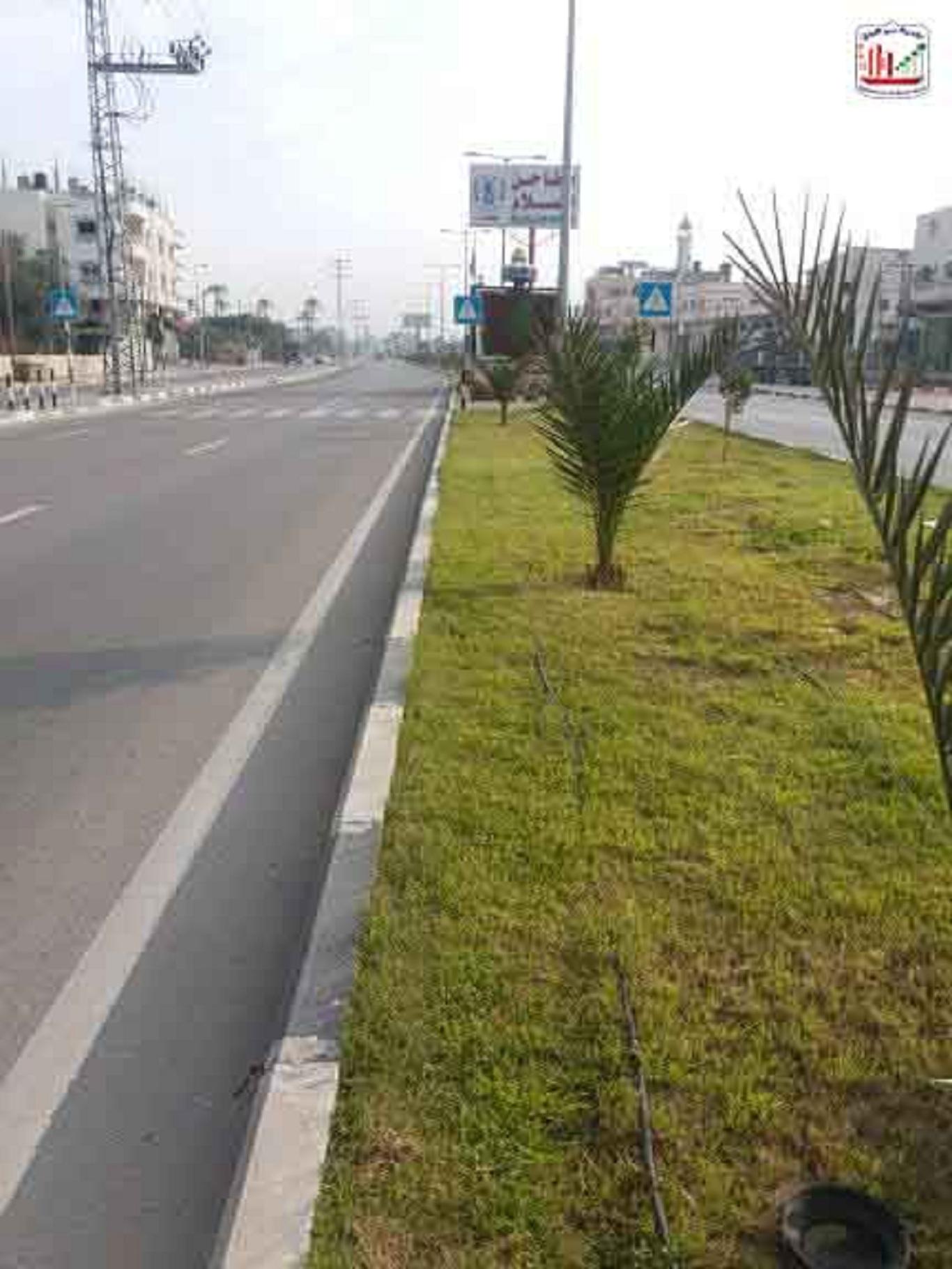جانب من أعمال تشجير وزراعة وتنظيم مدخل المدينة الشرقي –شارع صلاح الدين