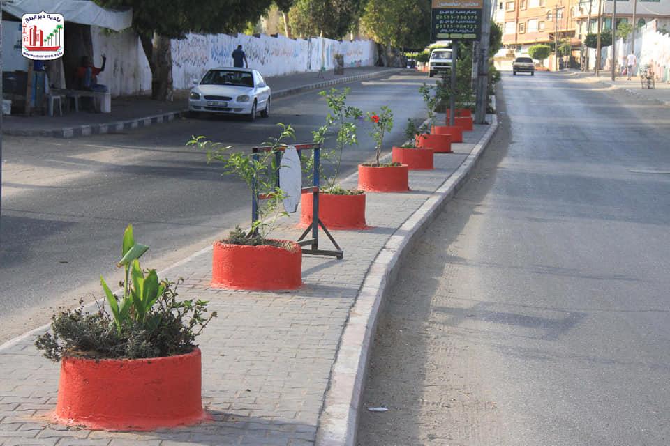 قسم الحدائق والمتنزهات ببلدية دير البلح خلال قيامه بأعمال تركيب سياجات حول الأشجار ودهان القواوير