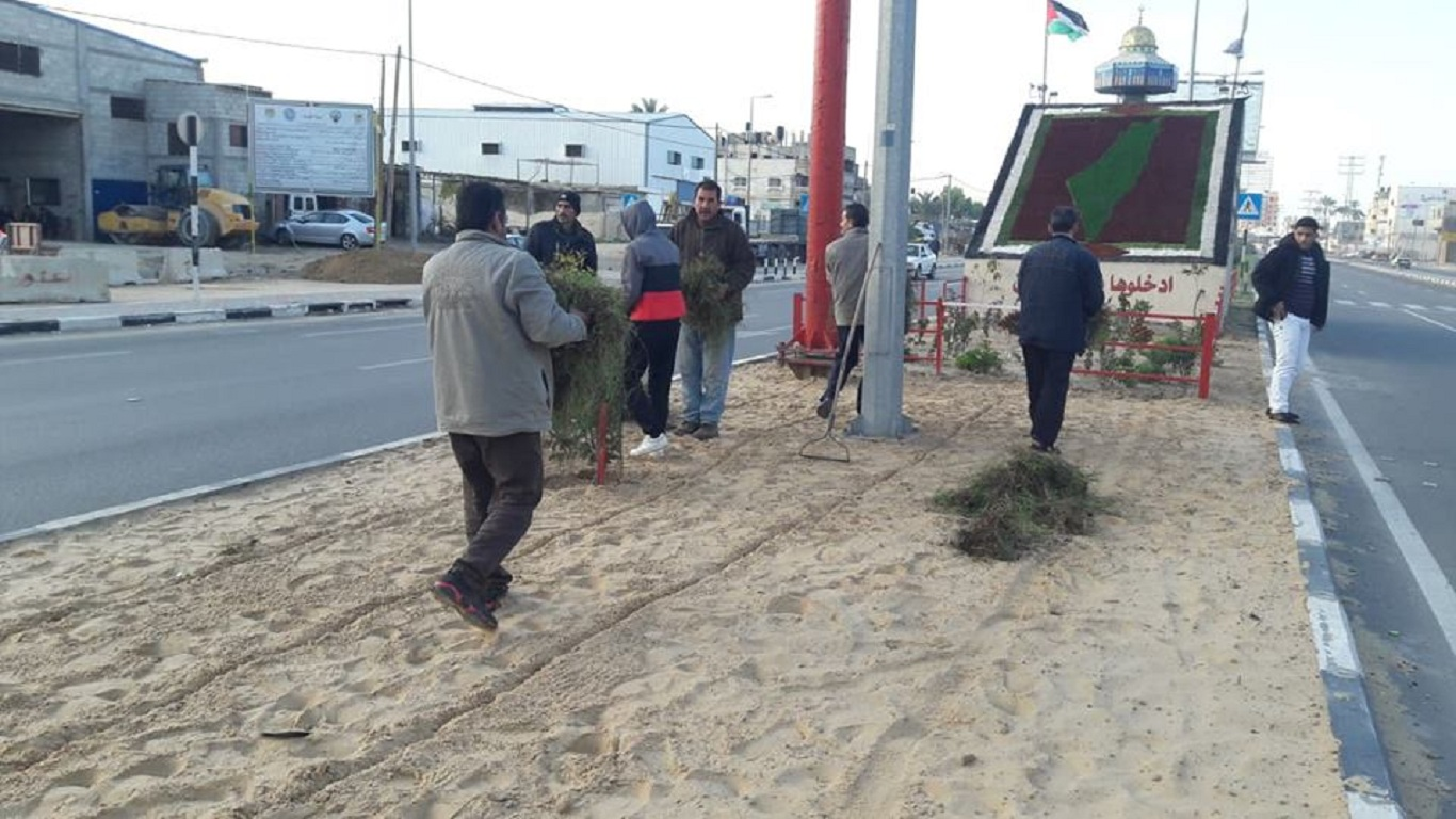 جانب من أعمال  استكمال زراعة النجيل في الجزيرة الخاصة بشارع صلاح الدين